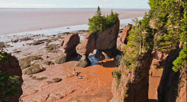 Bay of Fundy | Hopewell Rocks | New Brunswick, Canada