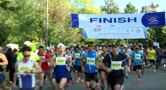 제 11회 평화 마라톤대회