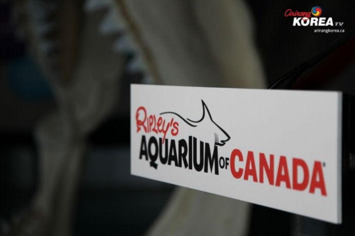 Ripley's Aquarium 개장